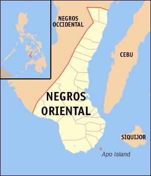 apo island .png